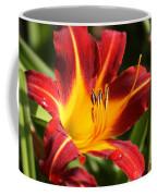 Tiger Lily0170 Coffee Mug