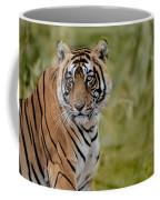 Tiger Look Coffee Mug