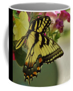 Tiger Swallowtail Butterfly On Begonia Bloom         June            Indiana Coffee Mug