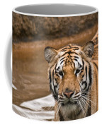 Tiger Wading Stream Coffee Mug