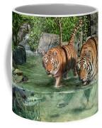 Tiger's Water Park Coffee Mug