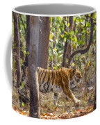 Tigress Walking Through Sal Forest In Pench Tiger Reserve  India Coffee Mug