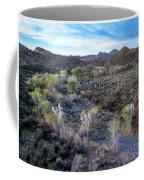 Tilt-shift Desert Wash Coffee Mug