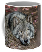 Timber Wolf Picture - Tw286 Coffee Mug