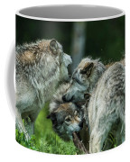 Timber Wolf Picture - Tw70 Coffee Mug