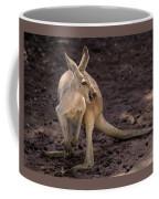 Time To Turn Around Coffee Mug