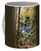 Tinker Falls Coffee Mug