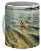 Tiny Crab In Water Coffee Mug
