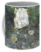 Tiny Fish In The Clear Water Coffee Mug