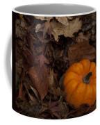 Tiny Pumpkin Coffee Mug