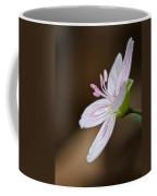 Tiny Spring Beauty Coffee Mug