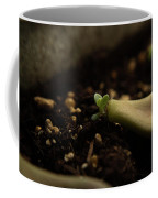 Tiny Succulent Coffee Mug