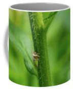 Tiny Warior 1 Coffee Mug