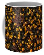 Tiny Yellow Flowrers On The Desert Floor Coffee Mug