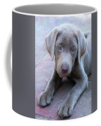 Tired Puppy Coffee Mug