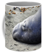 Tired Seal Coffee Mug