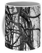 Tit Bird Perching On Tree Coffee Mug