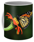 Tithonia Loving Monarch Coffee Mug