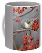 Titmouse Breakfast Coffee Mug