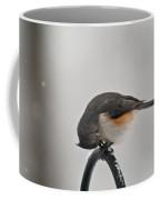 Titmouse Cracking Seed Coffee Mug