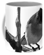 Titmouse Eyes Coffee Mug