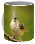 Titmouse Says Here Is Looking At You Coffee Mug