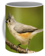 Titmouse With Bad Hairdo 3 Coffee Mug