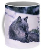 T.kitchin, 19552c Gray Wolf, Winter Coffee Mug