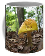 Toad Stool IIi Coffee Mug