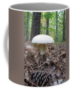 Toad Stool V Coffee Mug