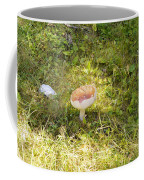 Toadstool Grows On A Forest Floor. Coffee Mug