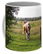 Tobiano Horse In Field Coffee Mug