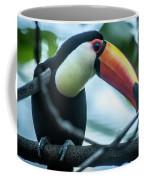 Toco Tuoucan Coffee Mug