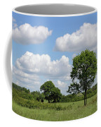 Tolworth Court Nature Reserve In Surrey Coffee Mug
