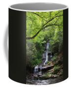 Tom Branch Falls - Gsmnp Coffee Mug