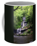 Tom Branch Falls Coffee Mug