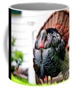 Male Turkey Coffee Mug