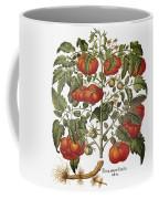 Tomato, 1613 Coffee Mug