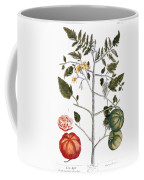 Tomato Plant, 1735 Coffee Mug