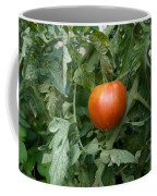 Tomato Plants In A Nebraska Garden Coffee Mug