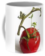 Tomato Seedlings Sprouting Coffee Mug