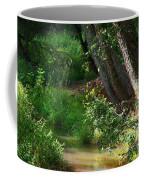 Toms Creek In Late Summer Coffee Mug