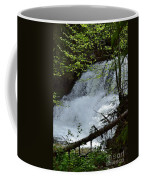 Top Of Clear Creek Falls Coffee Mug