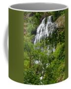 Top Of Munson Creek Falls Coffee Mug