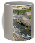 Top Of Noccalula Falls Coffee Mug