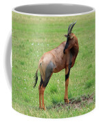 Topi Antelope - Masai Mara - Kenya Coffee Mug