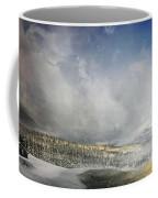 Topic Of Duality Winter-summer Coffee Mug
