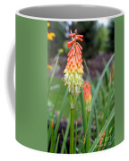 Torch Lily Flower Coffee Mug