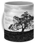 Tortue Oak Coffee Mug