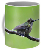 Totally Wet But Beautiful - Ruby-throated Hummingbird Coffee Mug